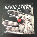 Lynch fever